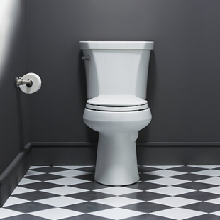 aging in place toilet